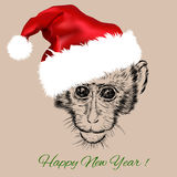 Vector of monkey portrait in red Santa Claus hat Royalty Free Stock Photography