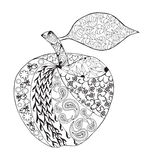 Vector Monochrome Apple zentangle style for coloring book. Hand Drawn Decorative Fruit illustration Stock Image