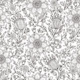 Vector Monochrome Floral Background. Stock Photos