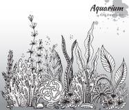 Vector monochrome hand drawn illustration with aquarium algae. Corals. Underwater world. Black and white hand drawn illustration Royalty Free Stock Image