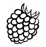Vector monochrome illustration of raspberry logo. Royalty Free Stock Photography