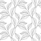 Vector Monochrome Seamless Floral Pattern Royalty Free Stock Images