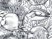 Vector monochrome seamless sea pattern with tropical fishes, algae, corals. Underwater world. Black and white hand drawn graphic endless background royalty free illustration