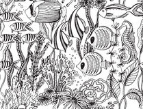Vector monochrome seamless sea pattern with tropical fishes Stock Photos