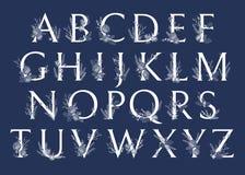 Vector monogramas ou o logotipo tirado mão das letras do Xmas ABC caixa Ilustração Royalty Free