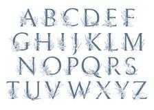 Vector monogramas ou o logotipo tirado mão das letras do Xmas ABC caixa Ilustração Stock