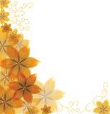 Vector mooie bloem Stock Afbeelding