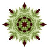 Vector Mooie Mandala In Color Royalty-vrije Stock Foto