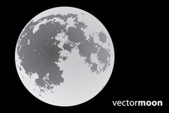 Vector moon Stock Photography
