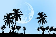 Vector moon Stock Photos