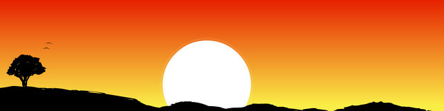 Vector - Morning Background. Vector of a Morning sunset vector illustration