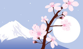 Vector Mount Fuji, moon and sakura Royalty Free Stock Image