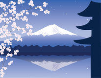 vector Mount Fuji and sakura Royalty Free Stock Photos