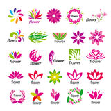 Vector multicolored floral logos Royalty Free Stock Image