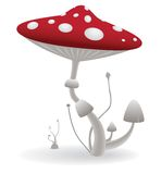 Vector mushroom Royalty Free Stock Images