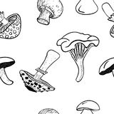 Vector mushrooms seamless pattern background, black drawing. Royalty Free Stock Photo