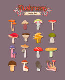 Vector mushrooms set Stock Photography