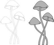 Vector mushrooms toadstool. Toadstool mushrooms vector gray and black and white Stock Images