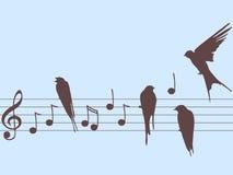 Vector muzieknota's en vogels stock afbeelding