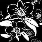 Vector naadloos bloemenpatroon Royalty-vrije Stock Afbeelding