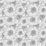 Vector Naadloos Bloemenpatroon, Overzichtsbloemen, Zwart-witte Schetsillustratie, Eindeloze Achtergrond royalty-vrije illustratie