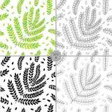 Vector Naadloos Contour Bloemenpatroon Hand Getrokken Bloementextuur, Decoratieve Bladeren, Kleurend Boek Stock Fotografie