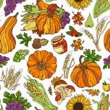 Vector naadloos de herfstpatroon vector illustratie