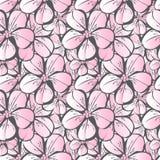 Vector naadloos patroon die met roze Japanse kers en dikke grijs bloeien royalty-vrije illustratie