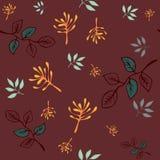 Vector naadloos patroon hand die wilde installaties, de bloemen van de kruidenkrabbel, kleurrijke botanische illustratie trekken, vector illustratie