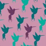 Vector naadloos patroon met de hand getrokken decoratieve illustraties van de krabbelkolibrie Stock Fotografie