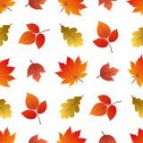 Vector naadloos patroon met de herfstbladeren stock illustratie
