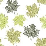 Vector naadloos patroon met hand getrokken oranje de bladerenillustraties van de krabbelesdoorn Groene decoratieve eiken achtergr Stock Fotografie