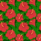 Vector naadloos patroon met hibiscus Stock Afbeelding