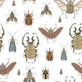 Vector naadloos patroon met kleurenkevers op witte achtergrond stock illustratie