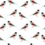 Vector naadloos patroon met kleurenvogels Royalty-vrije Stock Foto's