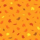 Vector naadloos patroon met kleurrijke de herfstbladeren Vector Illustratie