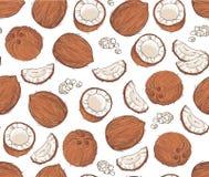 Vector naadloos patroon met kokosnoten Stock Foto