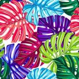 Vector naadloos patroon met tropische bladeren Tropische Textuur Wildernis bloemen herhaalbare achtergrond Monsterabladeren royalty-vrije illustratie
