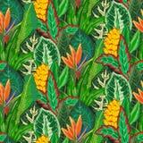 Vector naadloos patroon met tropische palmbladen, wildernisinstallaties, exotische bloemen vector illustratie