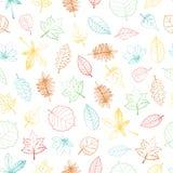 Vector naadloos patroon van gekleurd hand getrokken geweven blad royalty-vrije illustratie