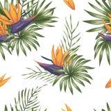 Vector naadloos patroon van groene tropische bladeren met strelitziabloemen stock illustratie