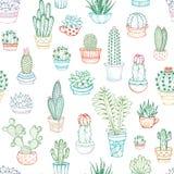 Vector naadloos patroon van lineaire cactussen en succulents Stock Afbeelding