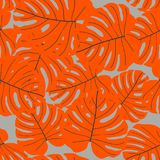 Vector naadloos tropisch patroon Stock Afbeeldingen