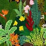 Vector naadloos uitstekend patroon Exotische bloemen en installaties stock illustratie