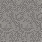 Vector Naadloos Zwart-wit Organisch Lijnenpatroon Stock Afbeelding