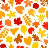 Vector naadloze achtergrond met de herfstbladeren Royalty-vrije Stock Foto's