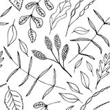 Vector Naadloze achtergrond met van bloemen vector illustratie