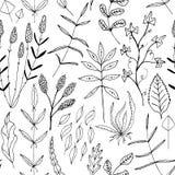 Vector Naadloze achtergrond met van bloemen Stock Afbeeldingen