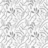 Vector Naadloze achtergrond met van bloemen royalty-vrije illustratie