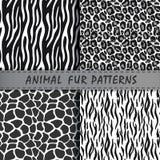 Vector naadloze die patronen met dierlijke huidtextuur worden geplaatst repeating Royalty-vrije Stock Afbeelding